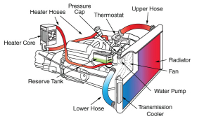 Cooling System Service in Long Beach, CA 90805 - Typical car cooling system showing the radiator, heater, reserve tank, hoses and the location or the pressure cap and water pump.